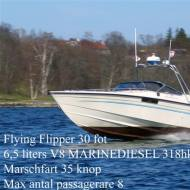Flying Flipper, Powered by 1 x Marine Diesel 300Hp